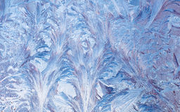 Frost on the window. Royalty Free Stock Images