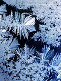 Frost on window pane. About 2 inches high against the night sky Royalty Free Stock Photos