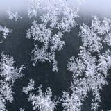 Frost on windowpane in winter night Stock Image