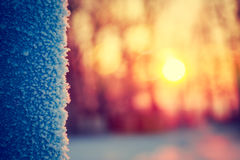 Frost in Winter. Abstract Background. Stock Photo
