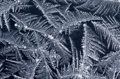 Frost on winter window. Frosty pattern on winter window stock photos