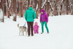 Frost-Wintersaison lizenzfreies stockbild