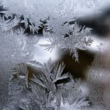 Frost - work. On icebound window Royalty Free Stock Images