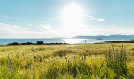 Frosta, Norway Royalty Free Stock Images