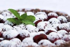 frostad pudding för Cherrycloseup Royaltyfria Bilder