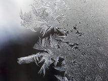 Frostade fönster arkivbild