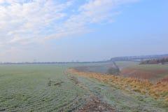 Frostade vetefält och skogsmarker ovanför en dal i vinter Arkivbild