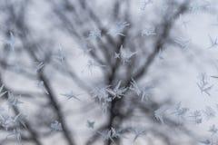 Frostat exponeringsglas på -5 celsiusa grader Royaltyfri Foto