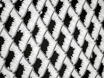 Frostat staket Arkivfoto