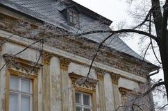 Frostat träd och historisk byggnad Arkivfoto