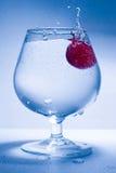 Frostbewegungstraube und Glaswasser Lizenzfreies Stockbild