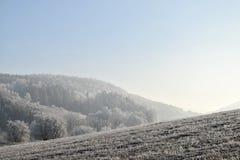 Frostbitten landskap, blå himmel Royaltyfria Bilder