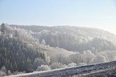 Frostbitten landskap, blå himmel Arkivbilder
