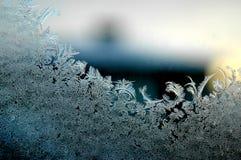 Frostblumen Lizenzfreie Stockbilder