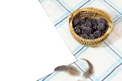 Frosted blackberry in basket Stock Photos