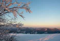 Frosted branch against mountains landscape Royalty Free Stock Photography