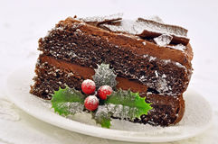 Frosted Chocolate Christmas Cake Stock Photography