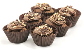 Frosted chocolate cupcakes Royalty Free Stock Photography