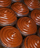 Frosted chocolate cupcakes Royalty Free Stock Image