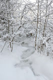 Frosted creek Royalty Free Stock Image