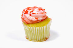 Frosted Cupcake Stock Image