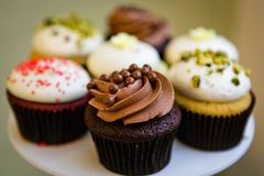 Frosted cupcakes, chocolate and vanilla Stock Image