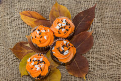 Frosted cupcakes. Orange frosted cupcakes on fall leaves Royalty Free Stock Photo