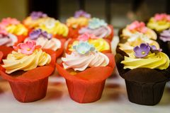 Frosted cupcakes in a pastry shop. A display of cupcakes in a pastry shop Stock Photography