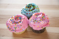 Frosted cupcakes Royalty Free Stock Image