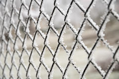 Frosted druciany ogrodzenie Obraz Stock