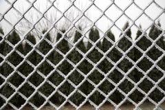 Frosted druciany ogrodzenie Zdjęcie Stock