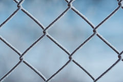 Frosted fence in a winters day Royalty Free Stock Photo