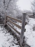 Frosted Fences Stock Photo