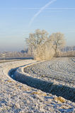 Frosted field Royalty Free Stock Photo