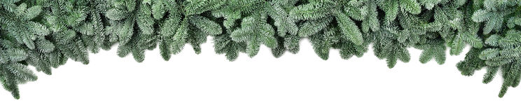 Frosted fir branches, wide Christmas border. Wide Christmas border arranged with frosted fir branches isolated on white shaped as an arch, banner format Royalty Free Stock Images