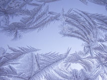 Frosted glass. Frosty natural pattern on winter window stock photos