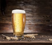 Frosted glass of beer on the wooden table. Royalty Free Stock Photo