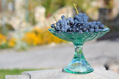 Frosted grapes in a glass vase Stock Photo