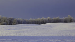 Frosted landscape Royalty Free Stock Photo