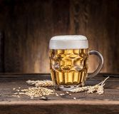 Frosted mug of beer on the wooden table. Royalty Free Stock Photos