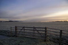 Frosted pasture near Wijngaarden Royalty Free Stock Photography