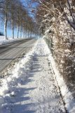 Frosted sidewalk. On a cold winter day Royalty Free Stock Photography