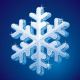 Frosted snowflake Royalty Free Stock Images
