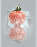 Frosted tomato Royalty Free Stock Photos