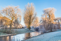 Frosted trees landscape Stock Image
