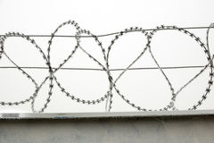 Frosted wall with barbed wire fence Royalty Free Stock Images