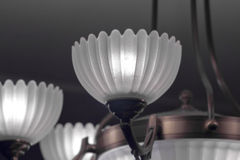 Frosted white shades on chandelier Stock Photography