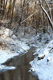 A frosted winter glen Royalty Free Stock Image