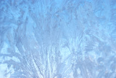 Frosted Winter Window Stock Photography