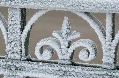 Frosten på stängerna av staketet Royaltyfria Bilder
